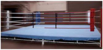 Boxring Aufbau