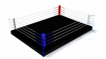 Fitboxing boxing ring